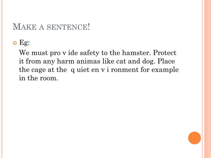 Make a sentence!