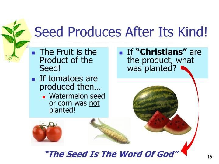 Seed Produces After Its Kind!