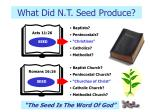 what did n t seed produce