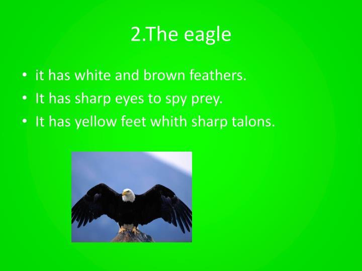 2.The eagle