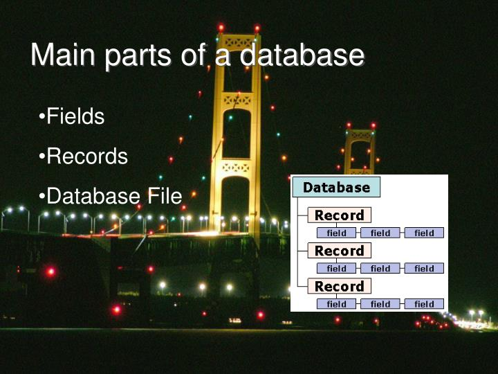 Main parts of a database