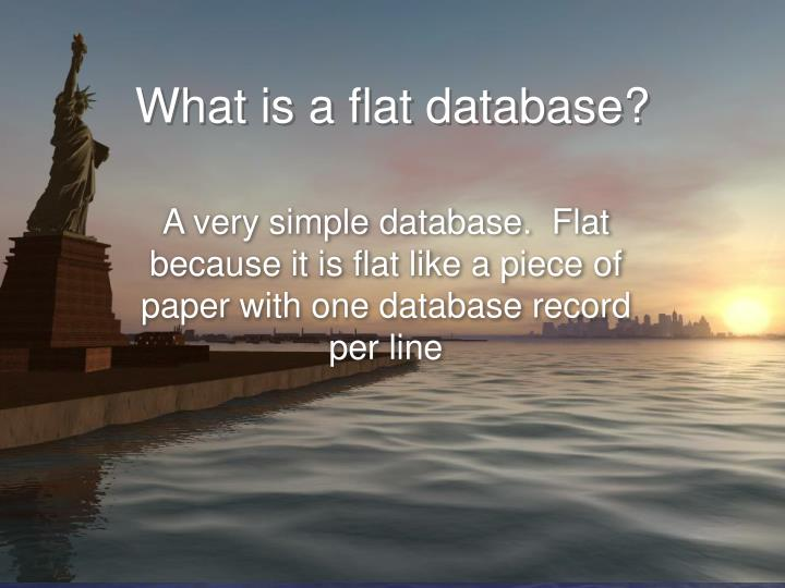 What is a flat database?