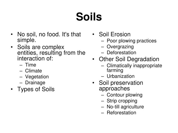 No soil, no food. It's that simple.