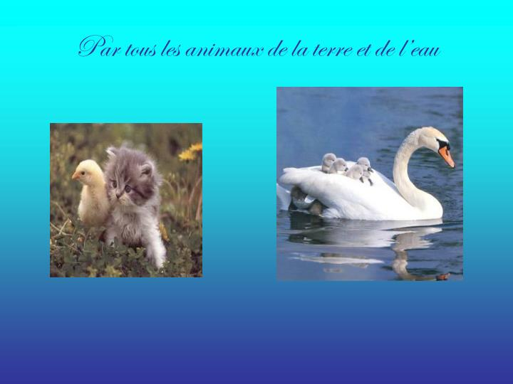 Ppt mon dieu tu es grand tu es beau powerpoint presentation id 2777594 - Terre et eau witry les reims ...