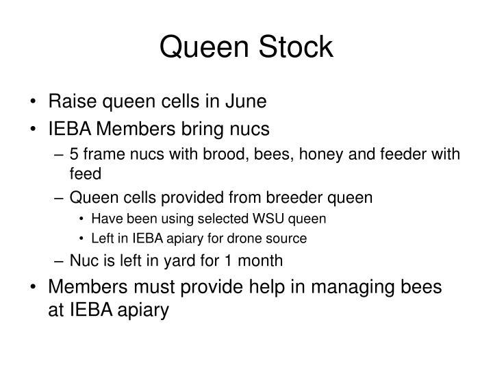 Queen Stock