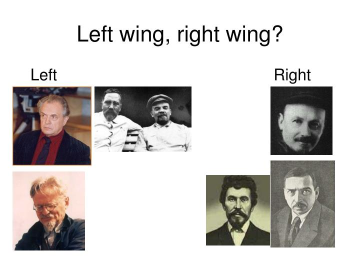 Left wing, right wing?