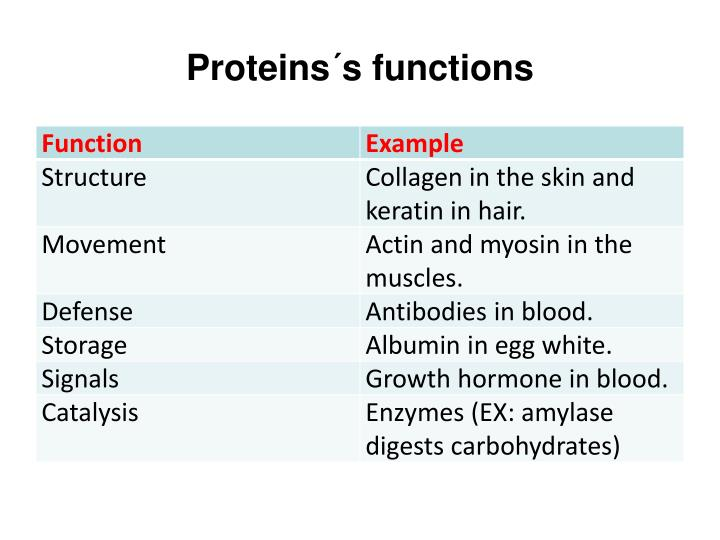 Proteins´s functions