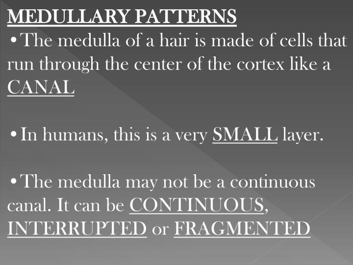 MEDULLARY PATTERNS