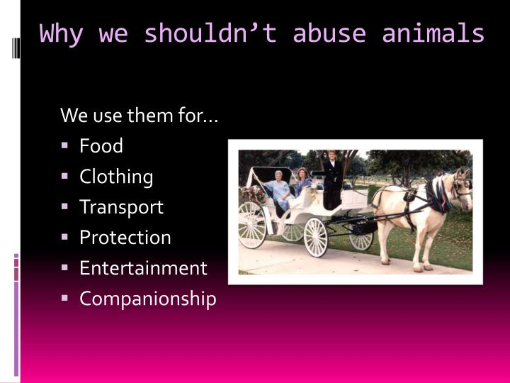 why animals shouldnt be used in Animals should be used in scientific research it's commonly argued that animal testing has or hasn't increased the average lifespan of humans by 235 years facts of why animals are used in.