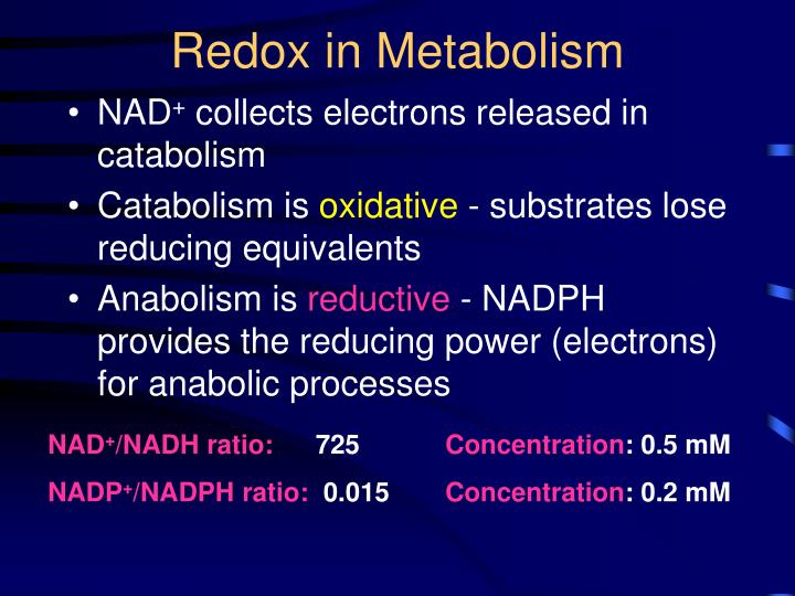 Redox in Metabolism