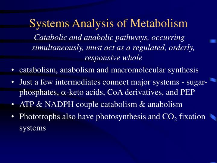 Systems Analysis of Metabolism