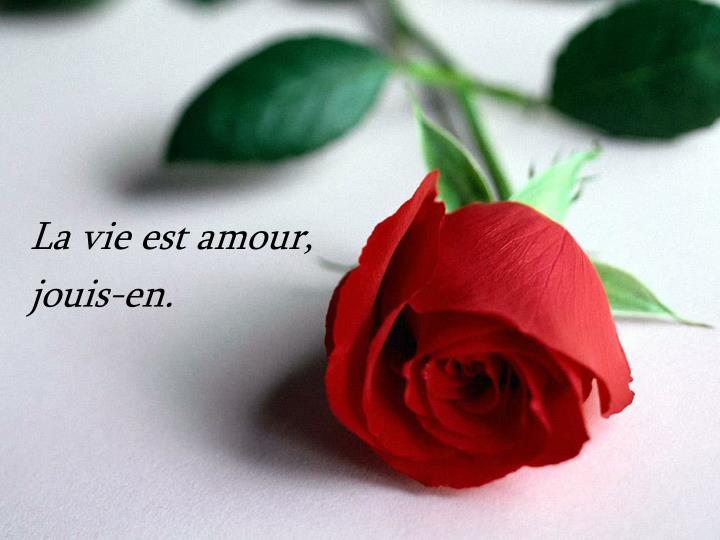 La vie est amour,