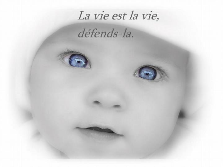 La vie est la vie,