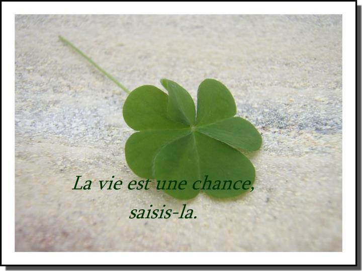 La vie est une chance,