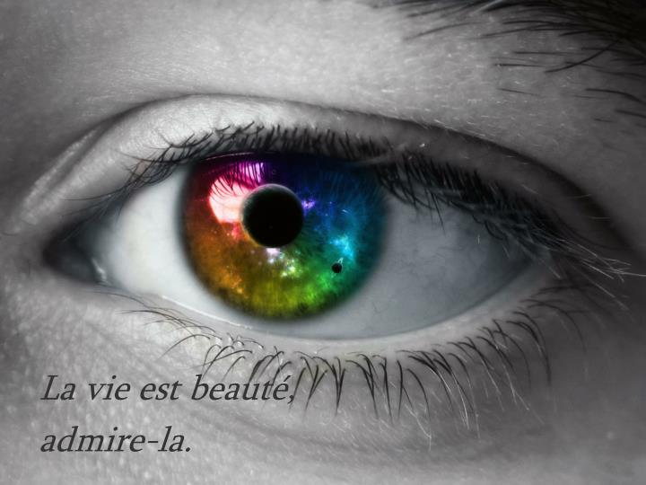 La vie est beauté,