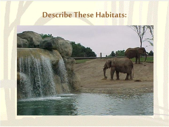 Describe These Habitats: