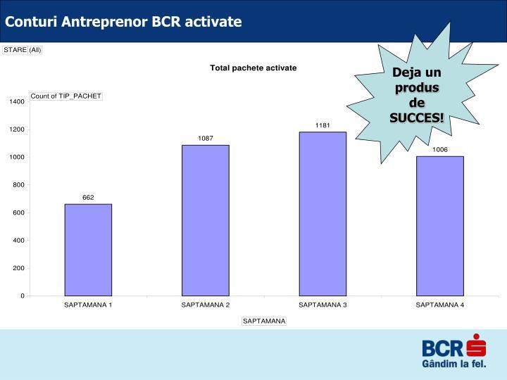 Conturi Antreprenor BCR activate