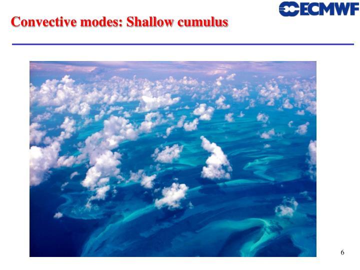Convective modes: Shallow cumulus
