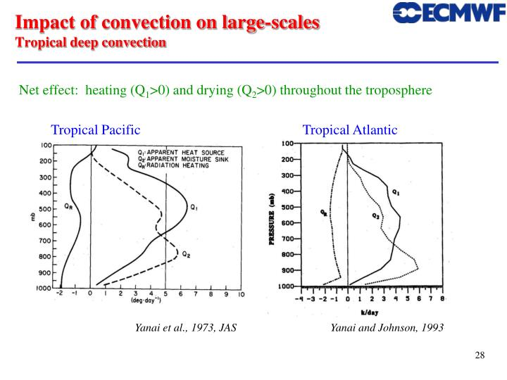 Impact of convection on large-scales