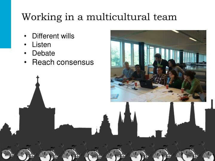 Working in a multicultural team