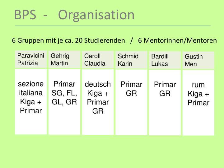 6 Gruppen mit je ca. 20 Studierenden   /   6 Mentorinnen/Mentoren