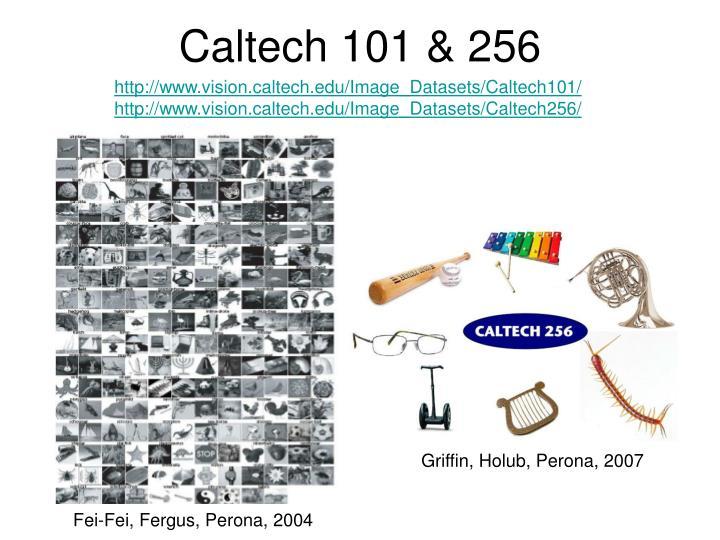 Caltech 101 & 256