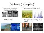 features examples
