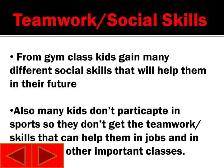 Teamwork/Social Skills