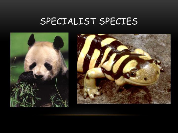 Specialist Species
