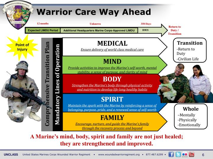 Warrior Care Way Ahead