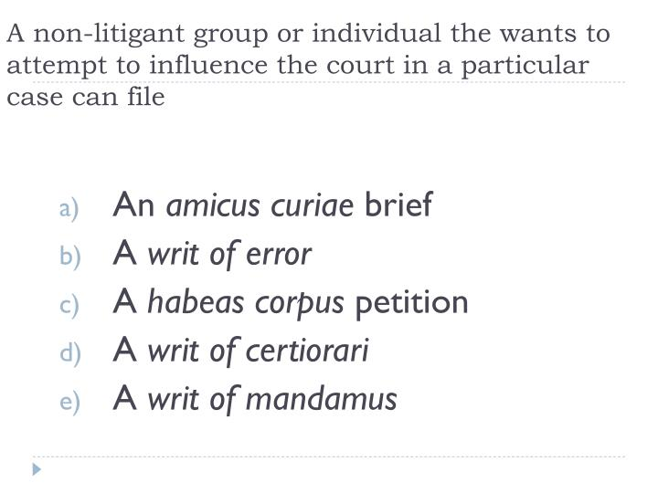 A non-litigant group or individual the wants to attempt to influence the court in a particular case can file