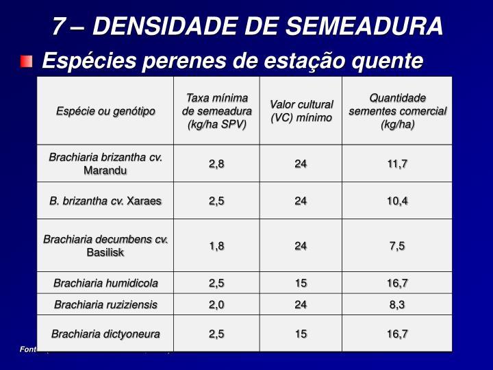 7 – DENSIDADE DE SEMEADURA