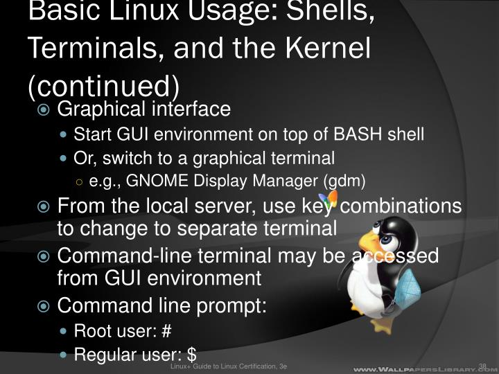 Basic Linux Usage: Shells, Terminals, and the Kernel (continued)