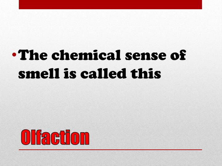 The chemical sense of smell is called this