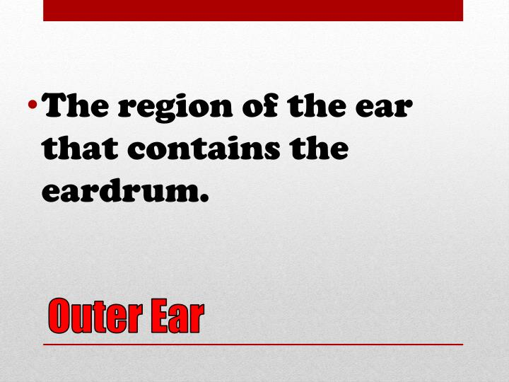 The region of the ear that contains the eardrum.