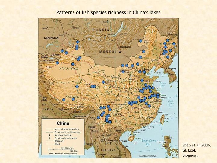 Patterns of fish species richness in China's lakes