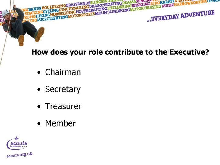 How does your role contribute to the Executive?