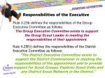 responsibilities of the executive