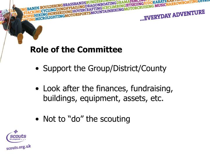 Role of the Committee