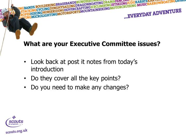 What are your Executive Committee issues?