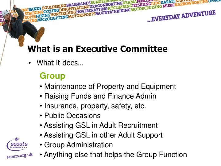 What is an Executive Committee
