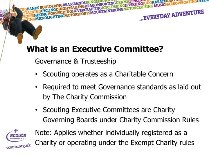 What is an Executive Committee?