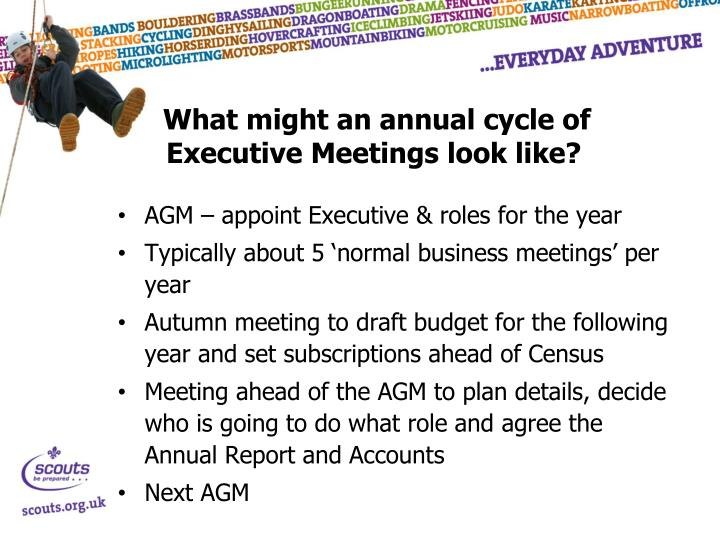 What might an annual cycle of Executive Meetings look like?