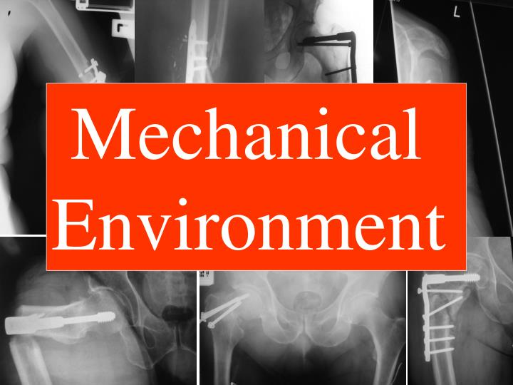 Mechanical       Environment