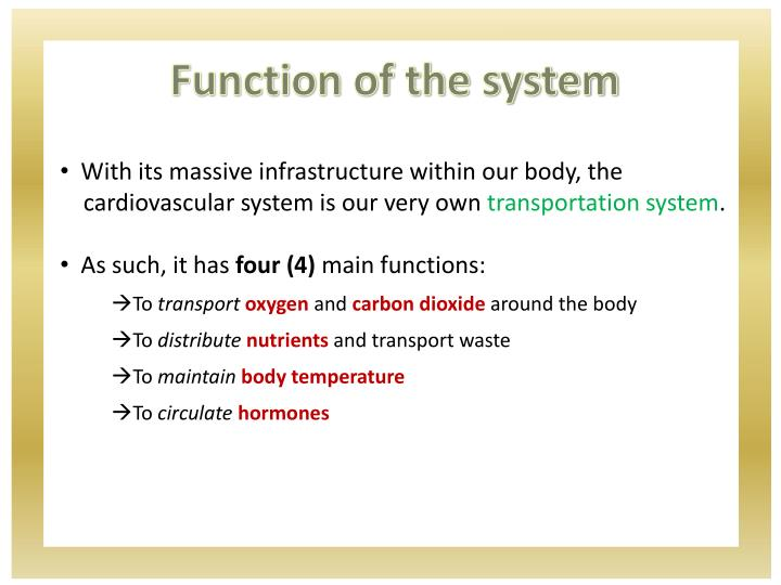 Function of the system