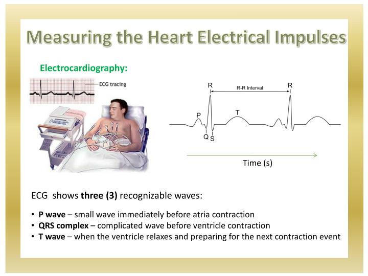 Measuring the Heart Electrical Impulses