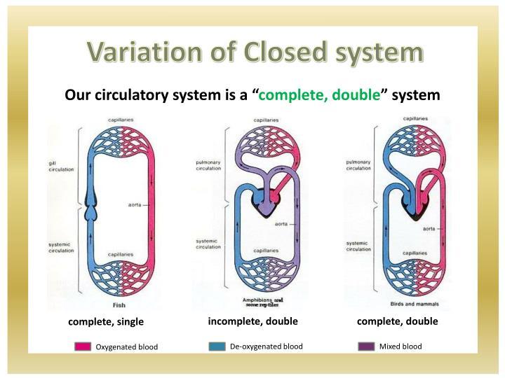 Variation of Closed system
