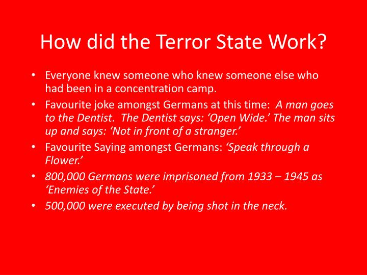 How did the Terror State Work?