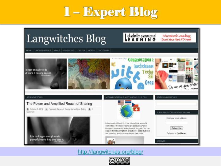 1 – Expert Blog