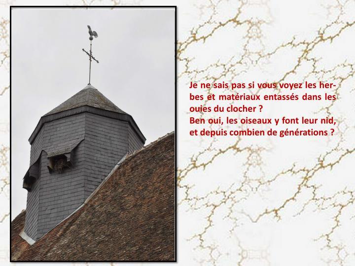 Je ne sais pas si vous voyez les her-bes et matériaux entassés dans les ouies du clocher ?